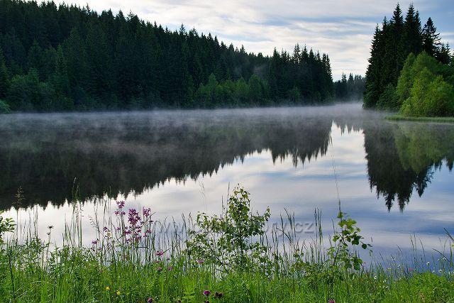 Jiřický rybník na Pohořském potoce
