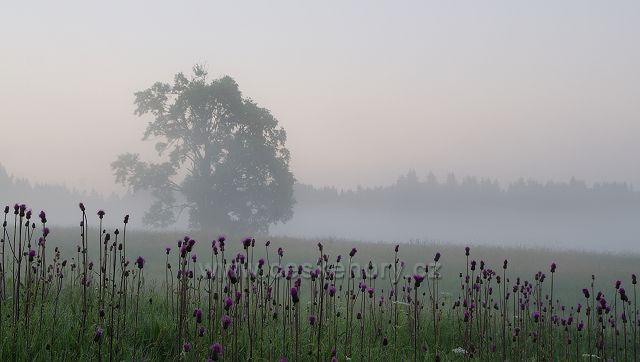 Novohradské svítání