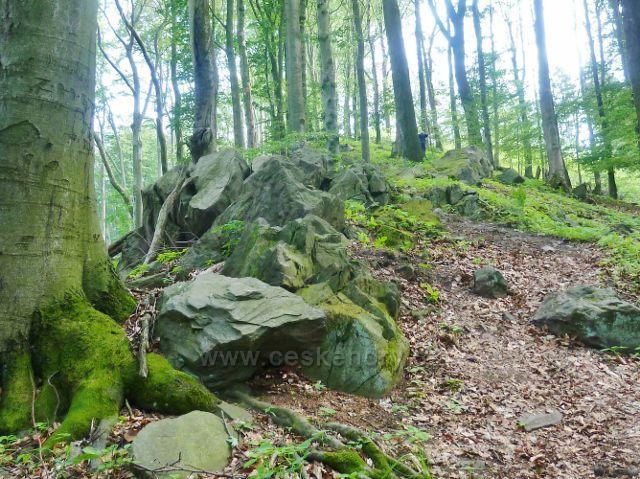 Potštejn - skalnatý hřeben kapradě