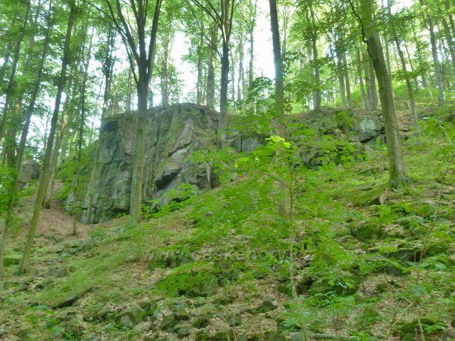 Potštejn - přírodní rezervace Modlivý důl