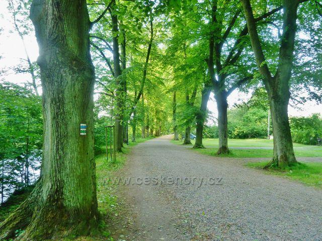 Potštejn - lipovou alejí vede zelená a modrá TZ