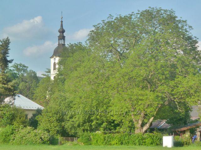 Potštejn - pohled k věži kostela sv. Vavřince