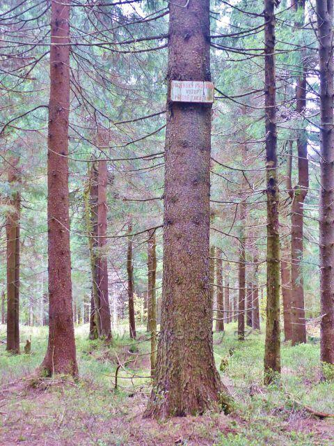 Panské Pole - vzpomínka na minulost(poblíž pramene Rokytenky)