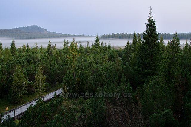 Jezerní slať je jedno z nejchladnějších míst v republice.