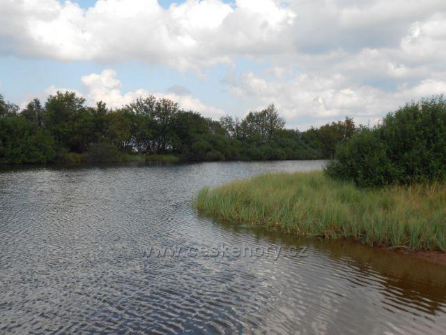 Dlouhý rybník u Cínovce
