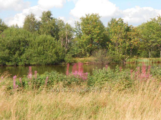 okolí Dlouhého rybníka