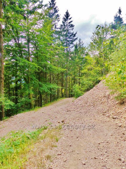 Odbočka cesty po modré TZ na vrchol Královeckého Špičáku