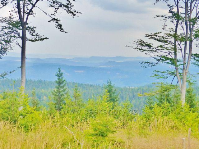 Z vrcholku Mravenčího vrchu jsou částečné průhledy do širokého okolí
