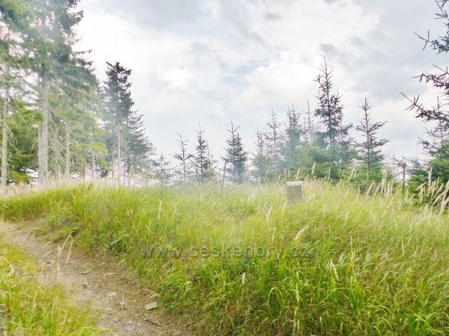 Vrcholek Mravenčího vrchu se nachází ve výšce  837 m.n.m.