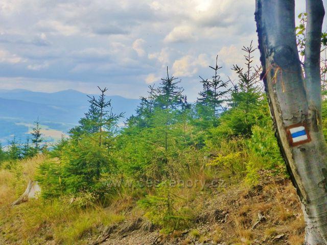 Výhledové místo na trase po modré TZ po vrcholkem Mravenčího vrchu