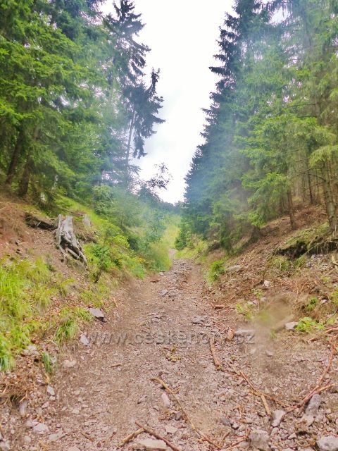 Sestupová cesta z Mravenčího vrchu