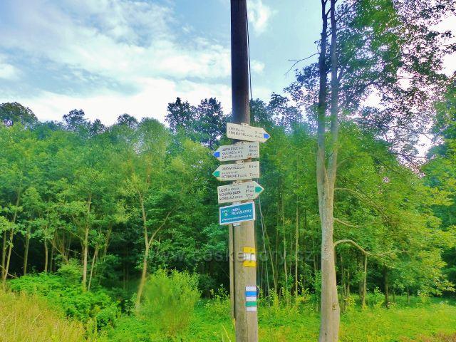 """Turistický rozcestník """"Bernartice - rozcestí"""" na modré a zelené TZ"""