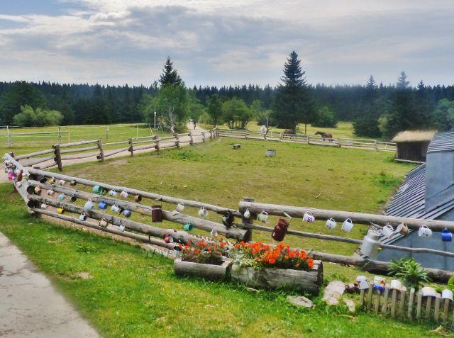 Rýchory - příchod k Rýchorské boudě je lemován množstvím  hrnečků zavěšených na ohradníku