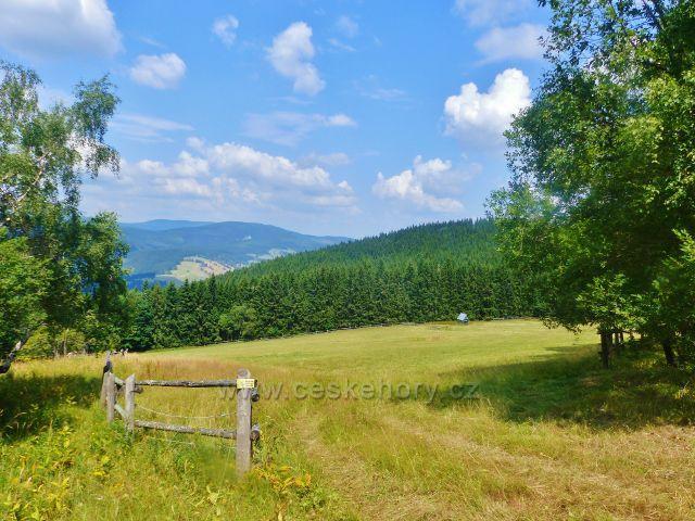 Rýchory - pastvina nad Rýchorským křížem