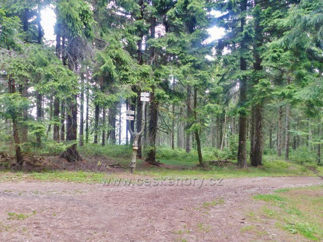 Rýchory - rozcestí Pod Dvorským lesem je na hranici okružní NS Rýchory