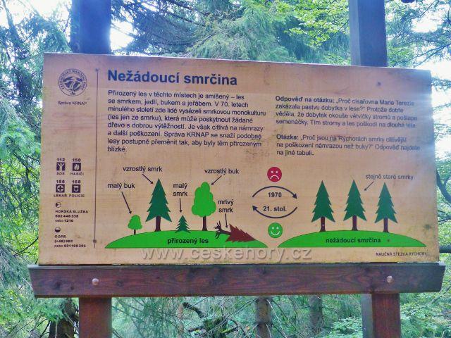 Rýchory - Dvorský les, panel na NS Rýchory Nežádoucí smrčina