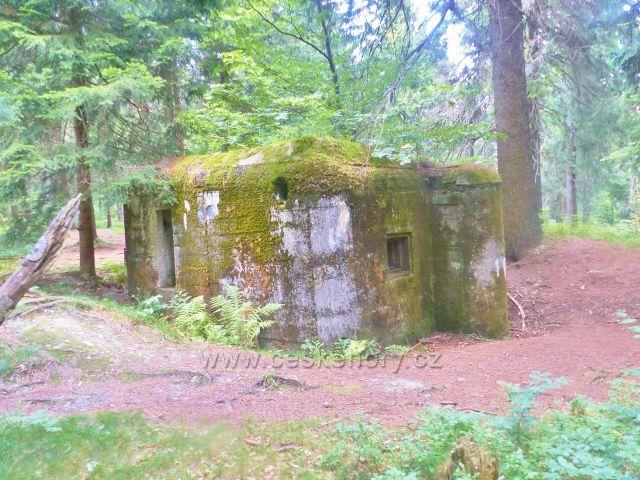 Rýchory - Dvorský les, řopík na trase NS Rýchory