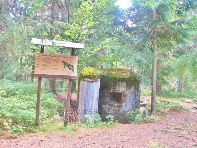 Rýchory - Dvorský les, na trase NS Rýchory je několik řopíků