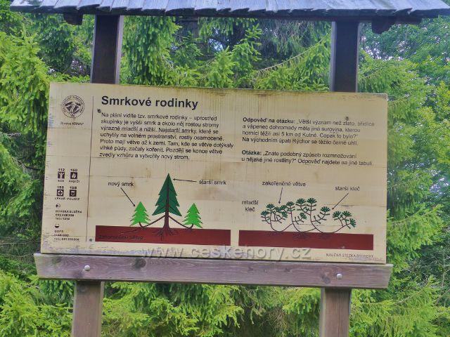 Rýchory - Dvorský les, panel NS Rýchory Smrkové rodinky