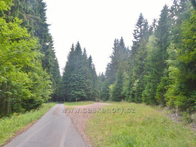 Rýchory - rozcestí Pašovka, zde ze zlaté cesty odbočuje trasa po žluté TZ na Sluneční stráň