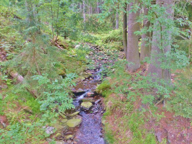 Malá Úpa - Soví potok