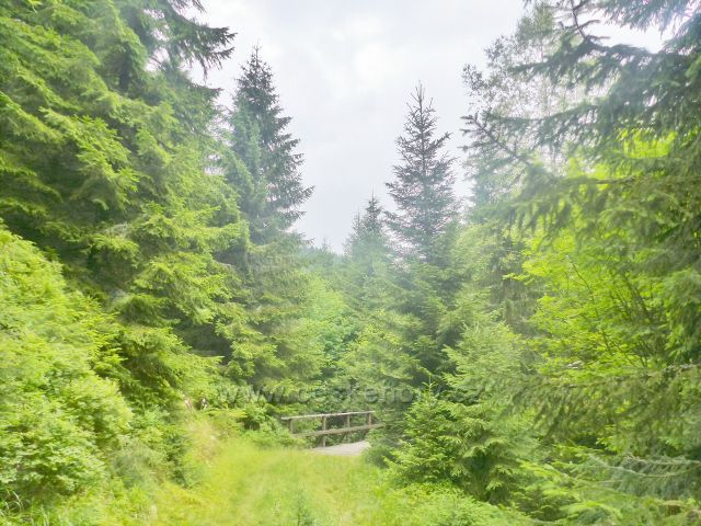 Malá Úpa - mostek přes Soví potok nad Sovím vodopádem