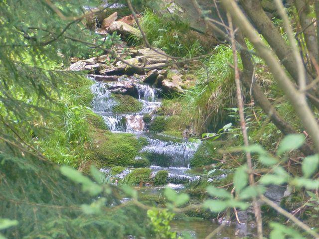Malá Úpa - Soví potok nad Sovím vodopádem