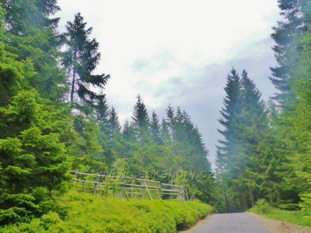 Horní Malá Úpa - silnička k chatě Jelence