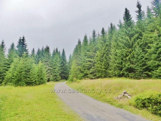 Horní Malá Úpa - silnička k chatě Jelenka