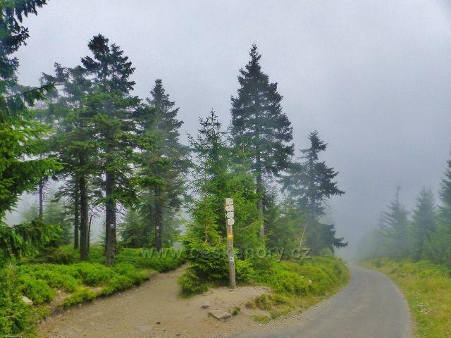 Horní Malá Úpa - rozcestí U Jelenky