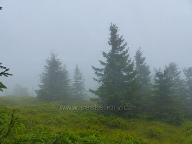Horní Malá Úpa -  mlha na cestě česko-polského přátelství před Sovím sedlem