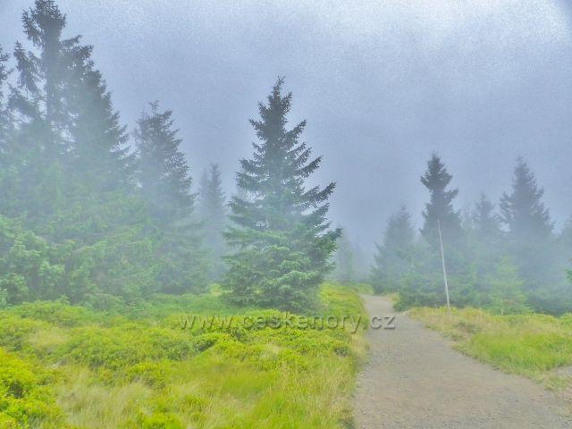 Horní Malá Úpa -mlha na Cestě česko-polského přátelství