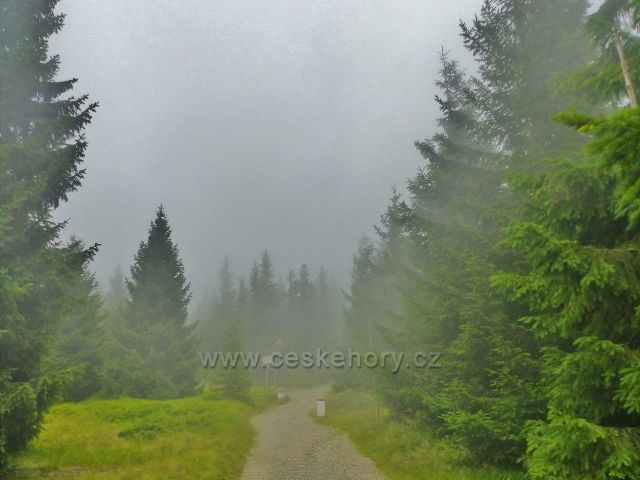 Horní Malá Úpa - rozcestí Nad Sovím sedlem zahaluje mlhový opar