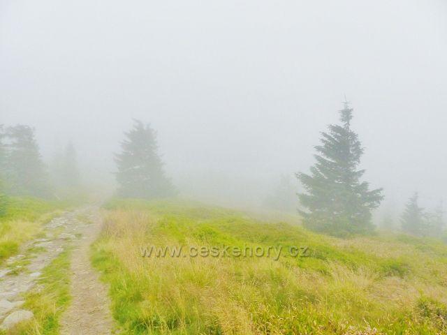 Horní Malá Úpa - hřebenová stezka k vrcholu Tabule v zajetí mlhy
