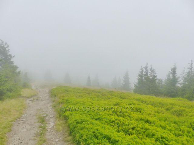 Horní Malá Úpa - borůvčí a mlha jsou průvodci trasy k vrcholu Tabule