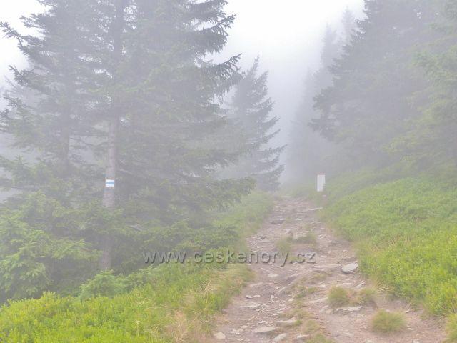 Horní malá Úpa - stezka po modré TZ po česko-polské hranici k vrcholu Tabule(1282 m.n.m.)