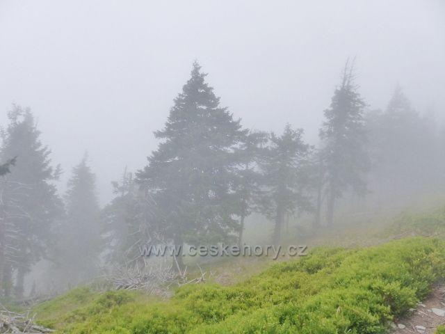 Horní Malá Úpa - všudepřítomná mlha pod vrcholem Tabule brání v rozhledu na polskou stranu Krkonoš