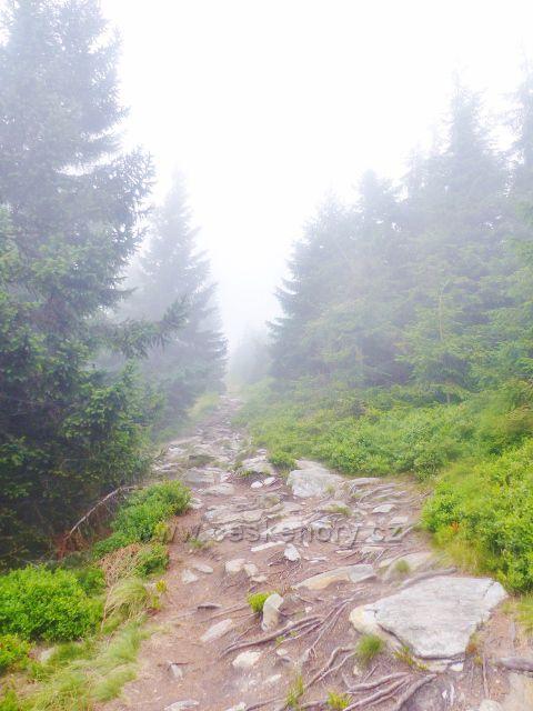 Horní Malá Úpa - kamenitá hraniční stezka před vrcholem Tabule
