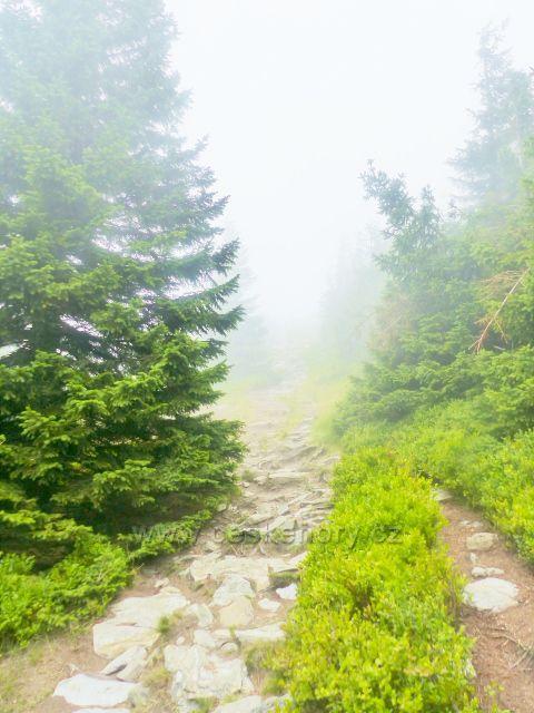 Horní Malá Úpa - vrchol Tabule se skrývá v mlze