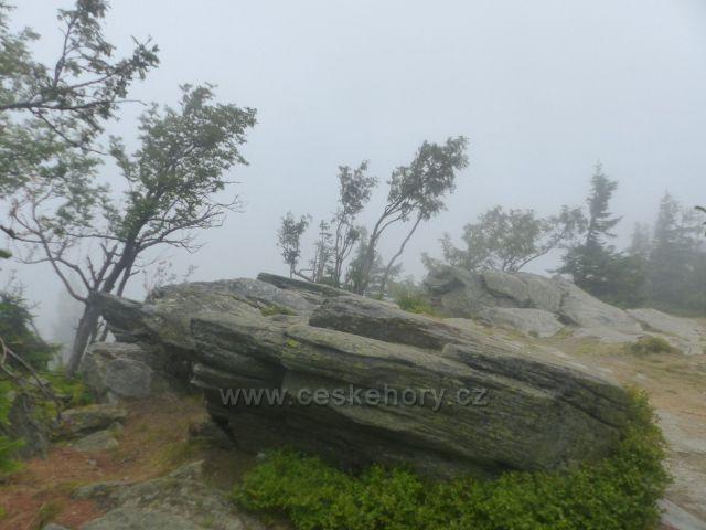 Horní Malá Úpa - větrem ošlehaný porost mezi skalisky na vrcholu Tabule