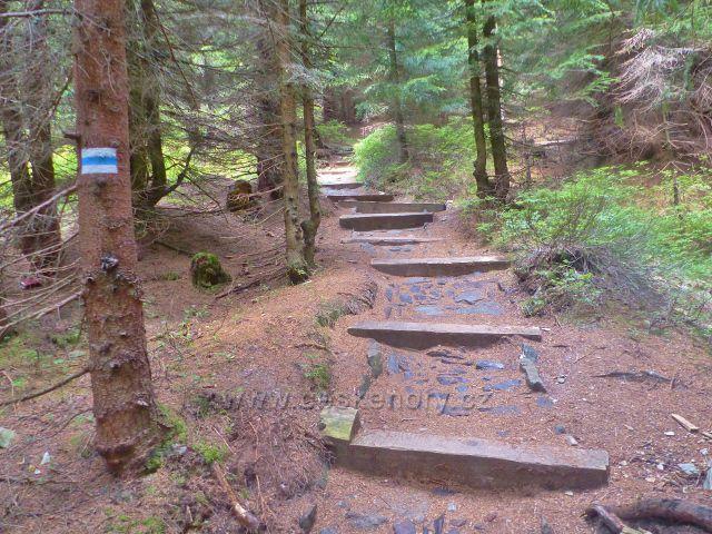 Horní Malá Úpa - dřevěné schody v dolní části stezky z vrchu Čelo na Pomezní boudy