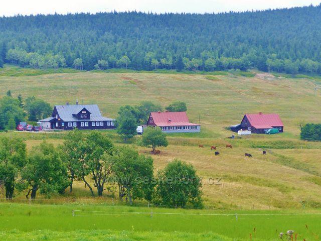 Horní Malá Úpa - pastviny v obci