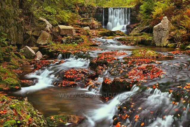 Pravostranný přítok Bílého Labe - Červený potok