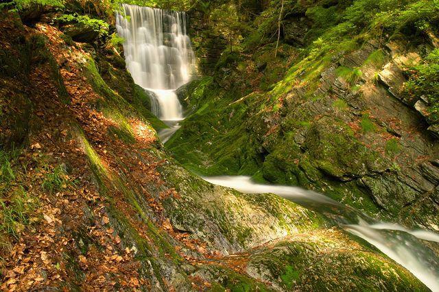 Černohorský potok u Janských Lázní