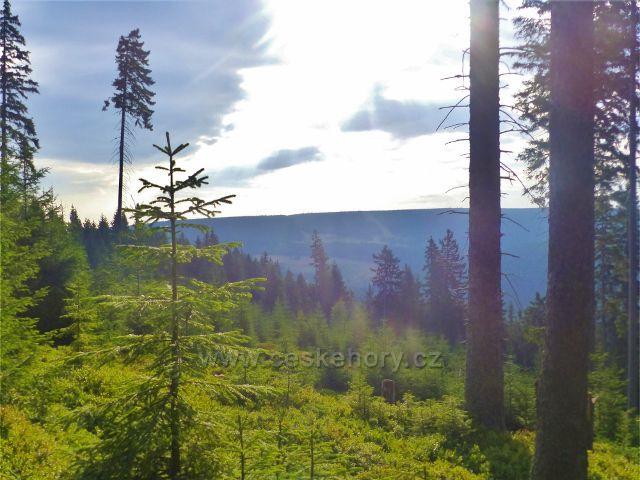 Malá Úpa - průhled od Velkého polomu k protilehlému vrchu Halda