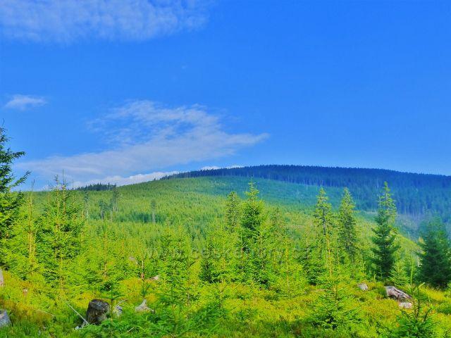 Malá Úpa - pohled na Velký polom. V pozadí vystupuje Svorová hora