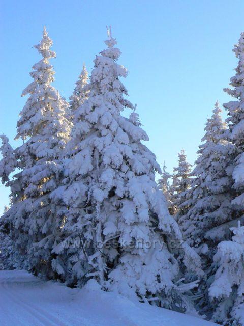 Zima na Malém Dědu