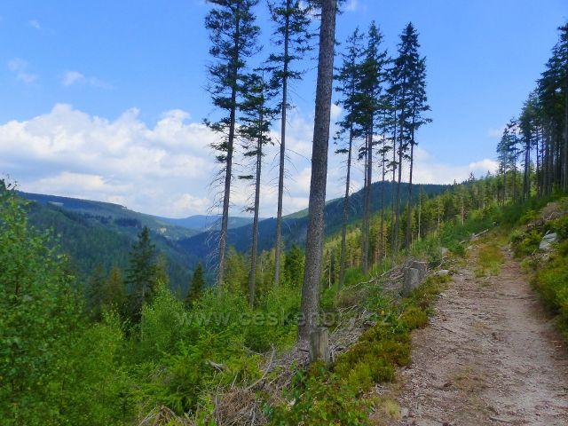 Horní Maršov - Emmina cesta po zelené TZ k rozcestí Nad Myslivnou