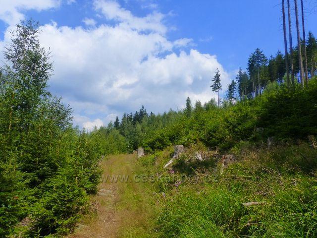 Horní Maršov - Emmina cesta k Cestníku po modré TZ