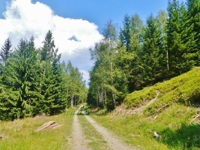 Horní Maršov - úsek Emminy cesty pod Elektrovodem